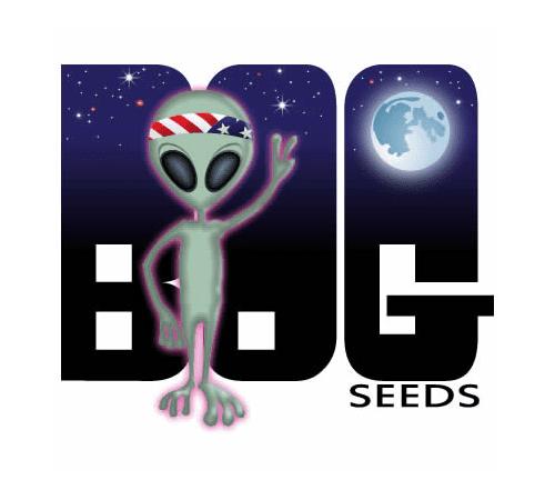 B.O.G. Seeds