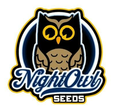 Night Owl Seeds